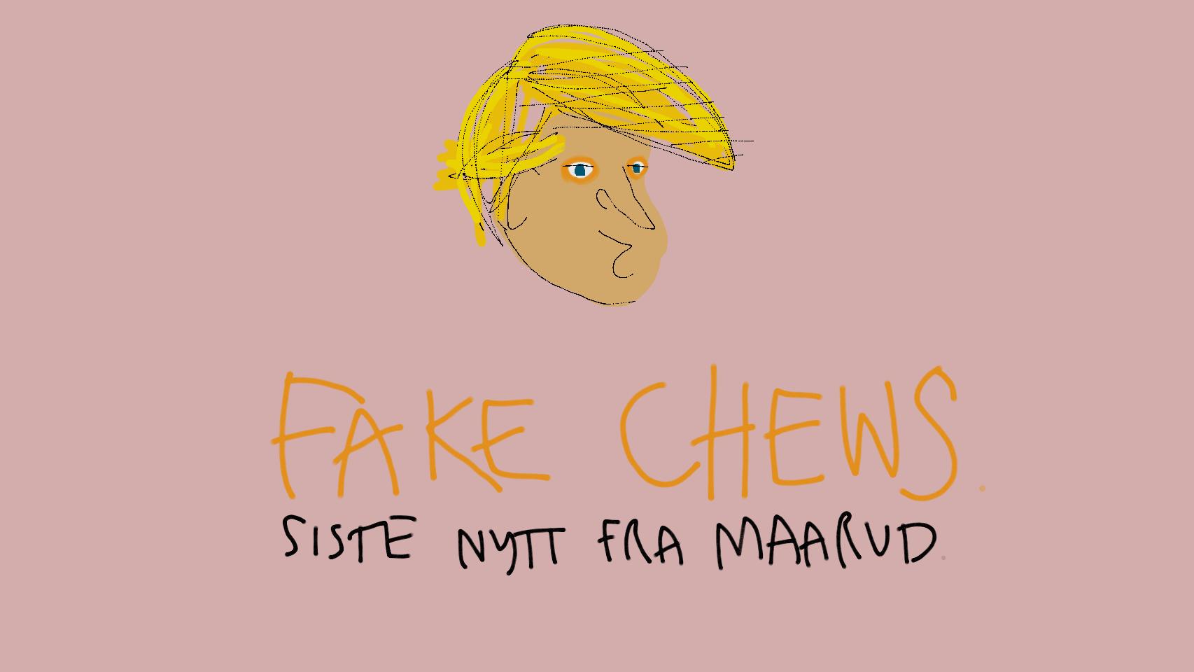#fakenews illustrasjon